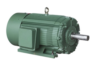 Crusher Duty  Motors Electricity Transmission & Distribution