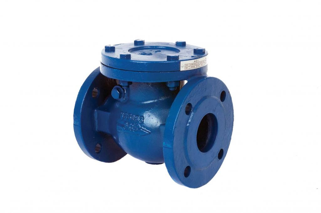 Swing Check Valve - Ductile Iron Plumbing Products