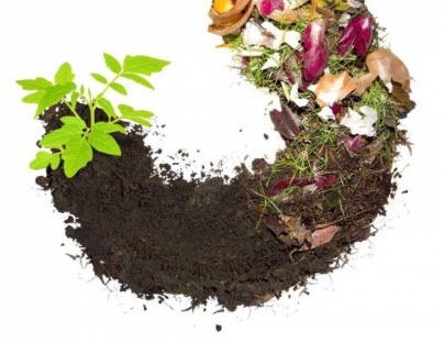Composter Analytical Solutions