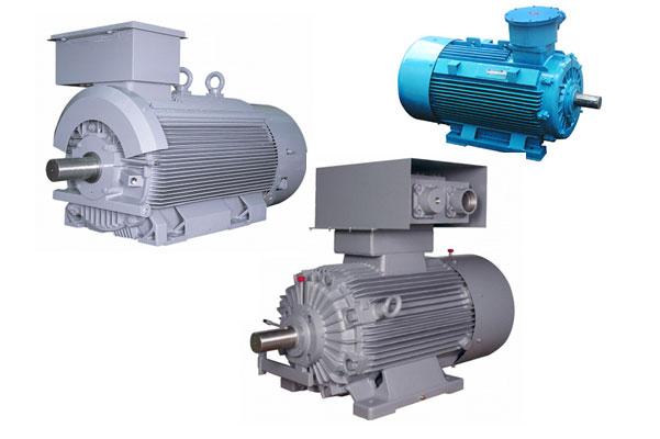 Explosion Proof Motors Electricity Transmission & Distribution