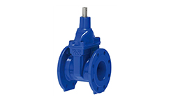 Resilient Seated Gate Valve – Non Rising Stem