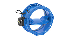 IN Flanged Butterfly Valve