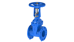 Rising Stem Gate Valve, Flanged