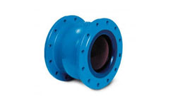 Axial Non Slam Check Valve