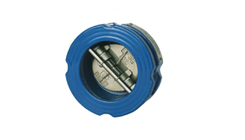 Dual Plate Check Valve - Ductile Iron