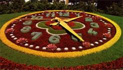 Floral Digital Clocks