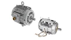 Smoke Extraction Motors