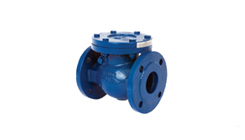 Swing Check Valve - Cast Iron